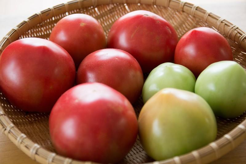 トマトが割れる原因と割れないための対策